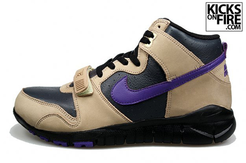 nike-trainer-dunk-tan-purple-2.jpg